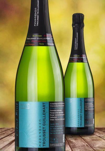 Champagne - Ramoino